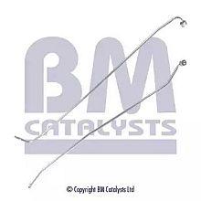 PP11016B BM CATALYSTS