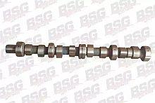 BSG30108003 BSG