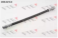 250E621E0 FTE