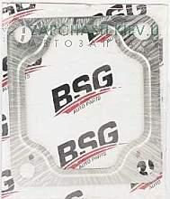 BSG30116025 BSG
