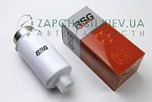 BSG30130011 BSG