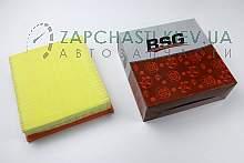 BSG30135003 BSG